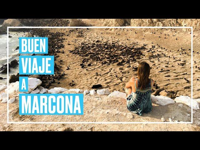 Dos reservas naturales en Marcona que tienes que conocer 🙌🏻