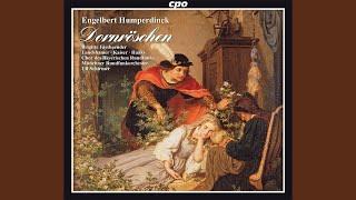 Dornroschen: Prelude Scene 1: Orchestral Prelude