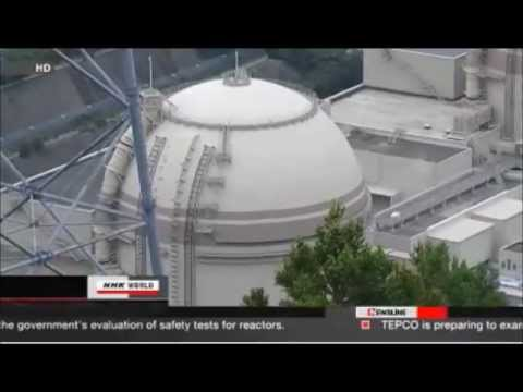 Japan: Government Vs. People - Calling IAEA Guns For Reinforcement