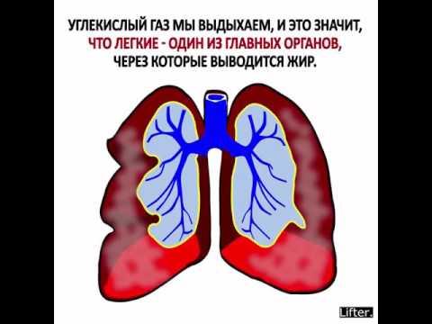 Методы лечения заболеваний