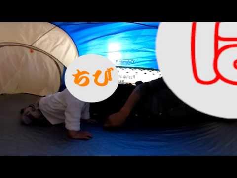THETA S [360°動画] 不器用パパ