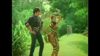 Thaaimel Aanai- Vaaika Varabukulla Vayasupulla Song