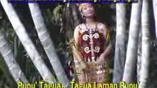 Download Lagu lagu dayak krio tagua,from mateus bujal kure village kalimantan barat mp3