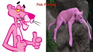 Pink Panther And Pals Characters In Real Life