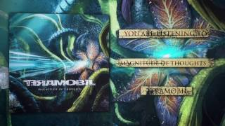 TERAMOBIL  -  Magnitude Of Thoughts (Official Video)