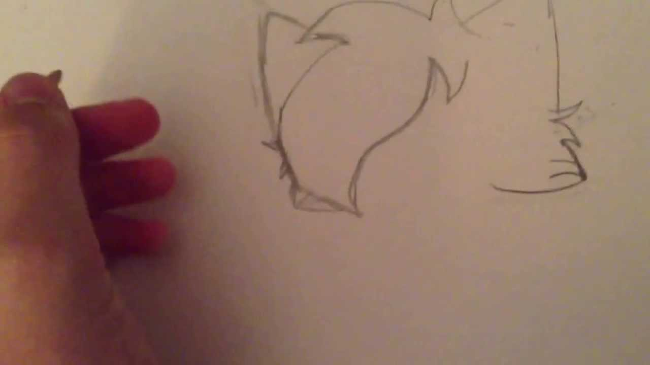 How to draw warrior cats manga step by