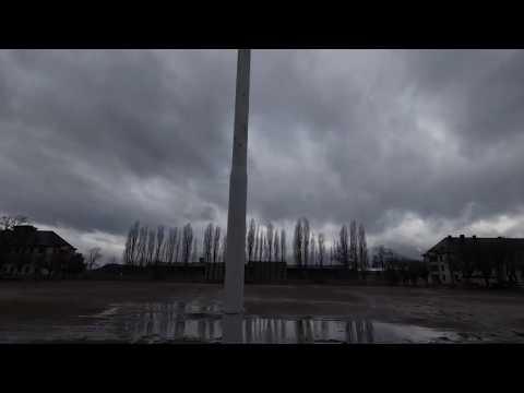 Wolfgang Müller - Americana [Offizielles Video]