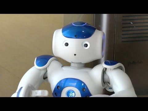 Meeting a Social Robot