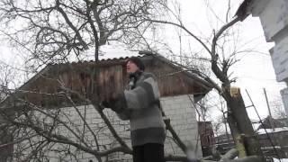 видео село вишенки черниговская область