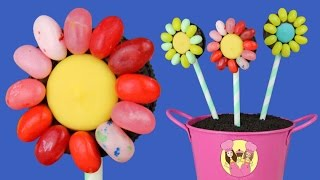 JELLY BELLY FLOWER OREO POPS - Mother's Day - Charli's Crafty Kitchen & Elly Awesome