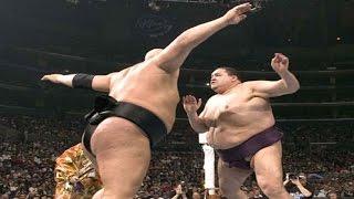 WWE Sumo Maçları
