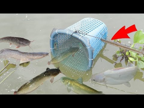 We Survival - Making Fish Trap Using Plastic Basket