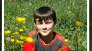 Детские клипы онлайн Карманы   Молодая лошадь