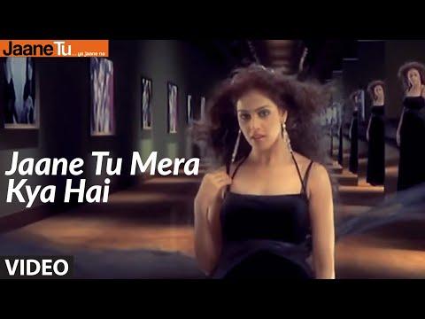 Jaane Tu Meri Kya Hai - 1, Film - Jaane Tu... Ya Jaane Na