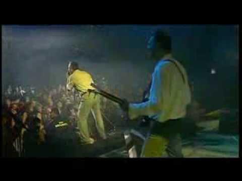 Pekinška Patka - Bela šljiva (Live @ Koncert Godine 2010)