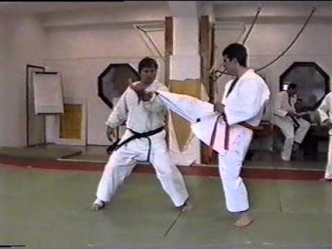 Karate In The Judo Individual Instruction Goshin Jitsu Bucz Zoltn