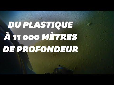 Des tonnes de plastiques sur un archipel de l'océan Indien