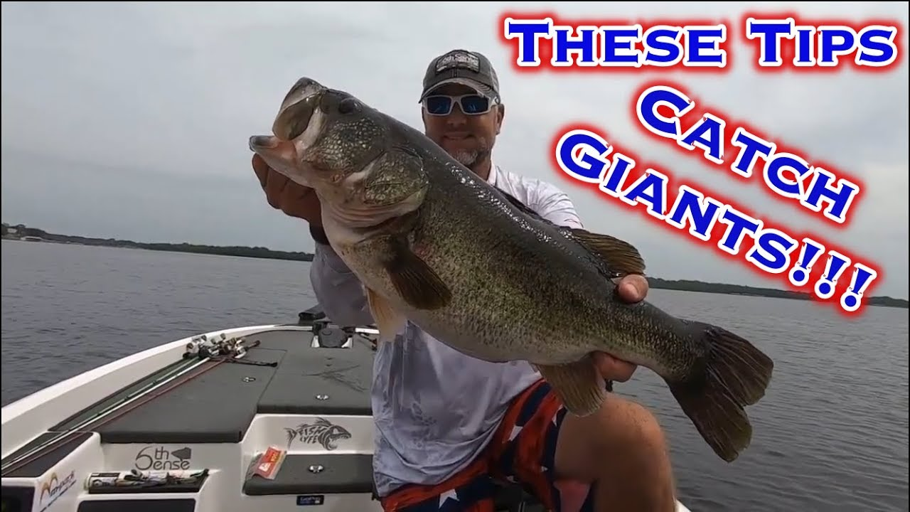 Lake Fork Bass Fishing Plastic Worm Tips For Fall Transition Youtube
