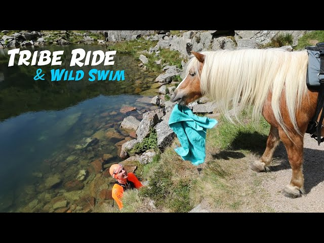 Tribe Moorland Ride & Wild Swim | CAT | DOG | PONIES x2)