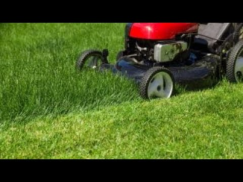Teen makes $100K with lawn mowing business