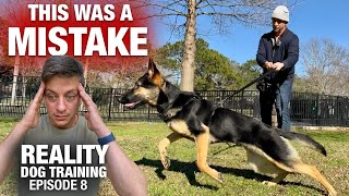 Everything was going fine until THIS happened. Reality Dog Training
