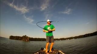 Predator fishing from boat