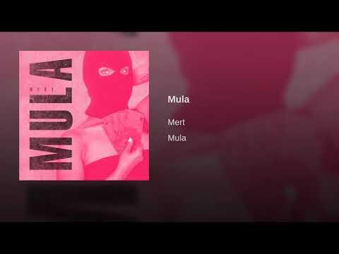 Mert - Mula ( official Audio )
