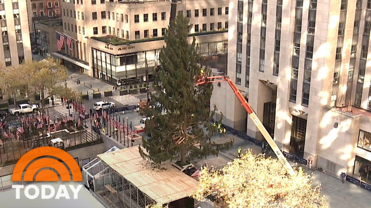 rockefeller christmas tree 2020 watch a time lapse video today