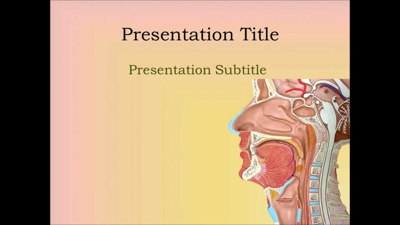 Ent powerpoint template sinus youtube ent powerpoint template sinus alramifo Choice Image