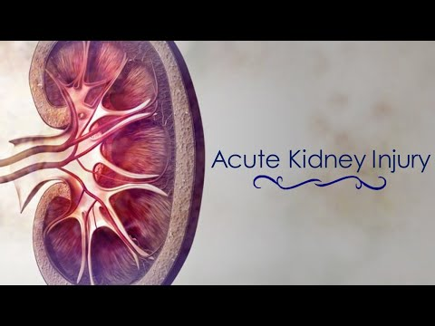 Acute Renal Failure / Acute Kidney Injury