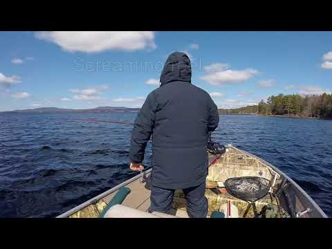 Fishing With Tom   Sebago Lake Maine Ice Out 2018