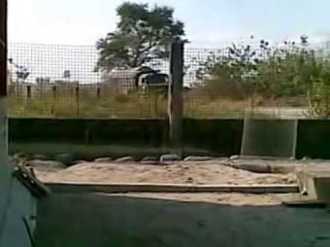 Sewage Truck ON ANOTHER DUMP RUN. Castillejos, Zambales RP Violations under Philippines RA9003
