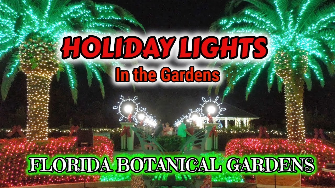 2018 holiday lights in the gardens at florida botanical - Florida botanical gardens christmas lights ...