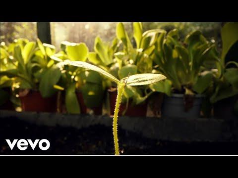 Смотреть клип Aquilo - Our Bones Turn To Stone
