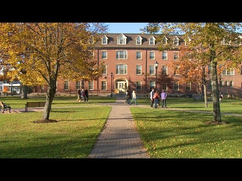 The UPEI International Student Experience