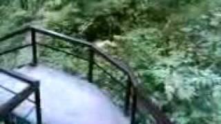 Шамордино(Лестница ведет к святому источнику в монастыре Шамордино Калужской области. Спускаться надо долго-долго,..., 2011-06-14T15:55:07.000Z)
