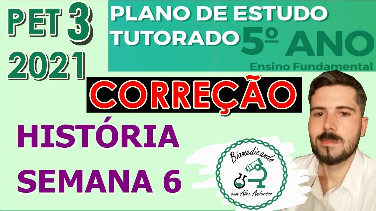 Download Correção PET 3 (2021) - História 5° ano (SEMANA 6) VOLUME 3