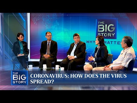 Coronavirus: How does the virus spread?   THE BIG STORY   The Straits Times