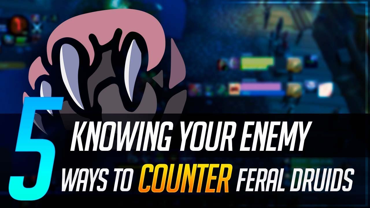 Knowing Your Enemy: 5 Ways To Counter Feral Druids in World of Warcraft | BfA 8.3 WoW PvP Guide