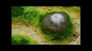 Интерактивная песочница, сделана в России Interactive project(Производство и продажа интерактивных систем. Больше о интерактивной песочнице и ее стоимости ЗДЕСЬ http://inte..., 2015-10-05T14:37:45.000Z)