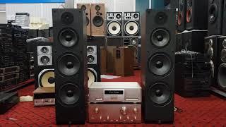 Loa cây mỹ Ar 330. 2 loa bass đánh uy lực, nghe đa thể loại nhạc karaoke gia đình rất hay