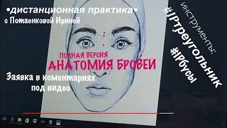 Естественные брови  (2 июня МАСТЕР КЛАСС Москва)