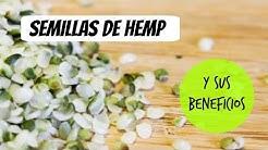 Beneficios de las semillas hemp/cañamo