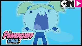 Powerpuff Girls | Cat Video Goes VERY Wrong! | Cartoon Network