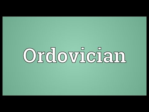 Ordovician Meaning