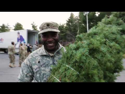 McKiddy - A Charity Will Deliver 16,000 Xmas Trees To Military Bases Around The World