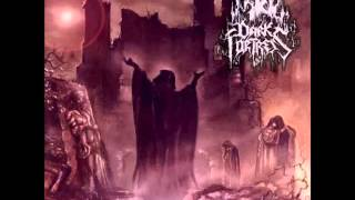 Dark Fortress - Misanthropic Invocation