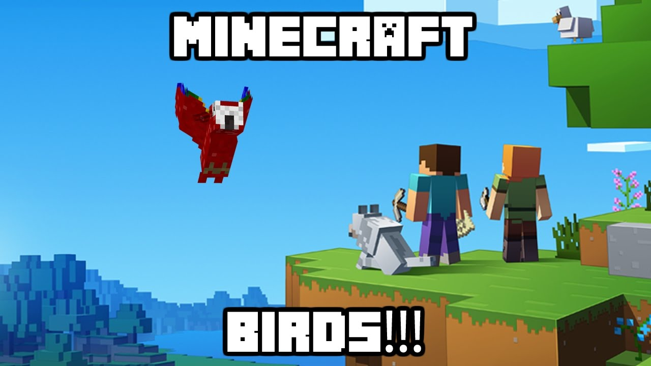 how to tame birds minecraft