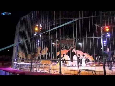"""Circus Krone """"Evolution"""" Premiere auf der Theresienwiese, München am 02.04.2015"""