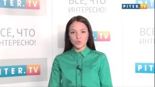 """""""Универ. Новая общага"""": 65 серия выходит в эфир, Настасью Самбурскую затравили в Интернете"""